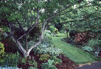 Sunken garden north of main entrance - 1999
