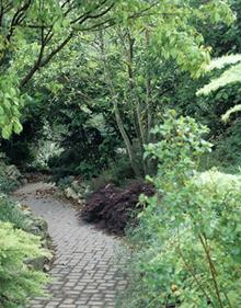 Grotto path after concrete paver installation - 1999