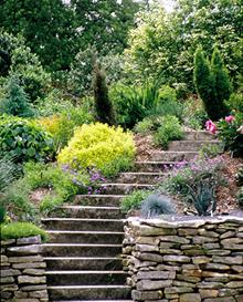 Sunken rain garden plantings by steps - 2006