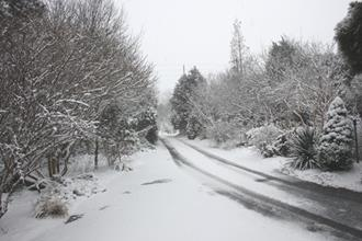 Main entrance drive snow - 2009