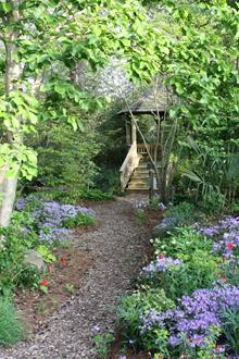Woodland garden toward gazebo